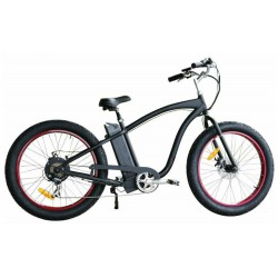 fatbike cruizer z beach